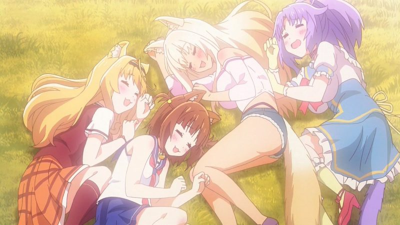 Nekopara Episode 3 Subtitle Indonesia